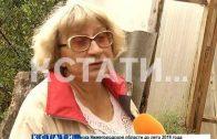 «Пирамиду здоровья» на своем участке построила жительница Городецкого района