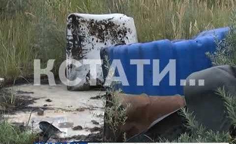 Сразу 6 свалок с химическим отходами обнаружены под Дзержинском