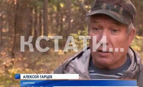 Европейский гуманизм в нижегородской охоте