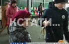 Лекарства и еда из бумаги — нижегородские школьники макулатурой накормили и вылечили животных