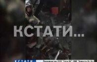 Ми-ми-мишная операция нижегородских пожарных — они спасли от огня щенячий выводок