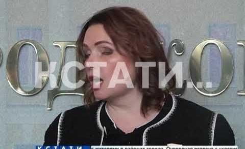 Бюджет Нижегородской области на 2019 утвержден