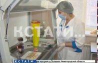 Опасный фастфуд — шаурму с кишечной палочкой выявили сотрудники Роспотребнадзора