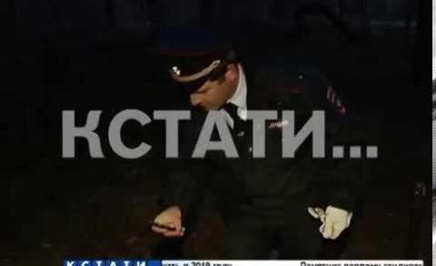 В Балахнинском районе грибники на обочине трассы обнаружили 3 неопознанные могилы