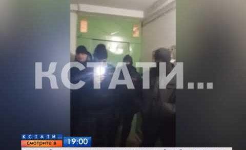 АНОНС: Убойная карма — пропажа дешевого телефона обернулась полицейским штурмом