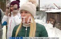 В Сормовском районе, прикрываясь поддельными разрешениями, уничтожили десятки деревьев