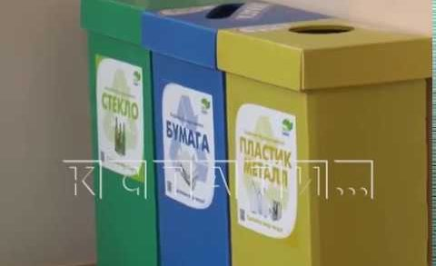 Разделяй и сортируй — муниципальные учреждения города переходят на раздельный сбор отходов