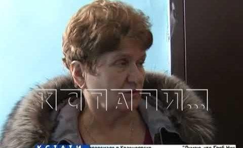 Жестокая дрессировка — в Автозаводском районе жительница выбросила 7 котят из окна