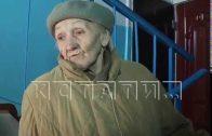 «Нижегородский Хатико» — в Автозаводском районе от тоски по хозяйке погибает дворняга