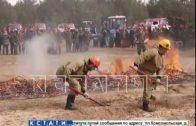 Сводный отряд городских служб на учениях продемонстрировал готовность к пожароопасному сезону