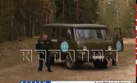Нижегородские лесники перешли к круглосуточному патрулированию лесов.