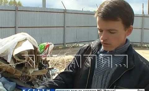 Новую нелегальную свалку на месте закрытой по решению суда организовали на Бору
