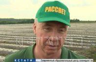 Посевная кампания в Нижегородской области почти завершена