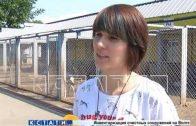 Собачья тюрьма, где животных растили на убой, обнаружена в Выксе