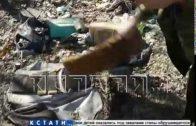 Восточный проезд превратился в мусорный