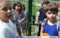 Площадка для избранных — детскую площадку обнесли забором, чтобы не пускать детей из соседних домов