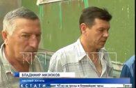 Спасать замурованных в стену котят пришлось в Автозаводском районе