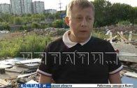 Росприроднадзор требует десятки миллионов рублей с садоводов, пострадавших от нелегальной свалки
