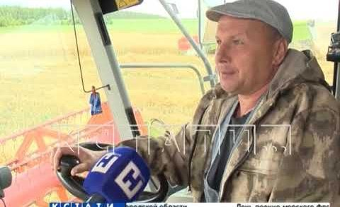 Уборочная компания началась в Нижегородской области