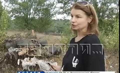 Жители начали фото-охоту на мусорщиков, загрязняющих берега Оки