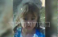 Спецслужбы и сотни волонтеров ищут 5-летнюю девочку пропавшую в Вознесенском районе