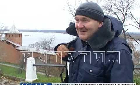 Дикая лиса поселилась в Нижегородском кремле и играет с воронами