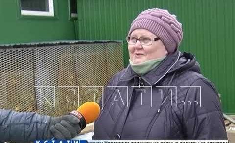 В микрорайоне «Цветы» появится самая большая школа в Нижнем Новгороде