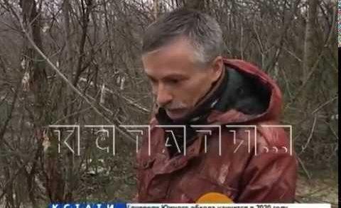 Новая нелегальная свалка выявлена в Дзержинске