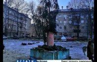 Похоронная елка — коммунальщики шокировали жителей ободранным новогодним деревом