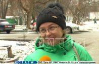 Цветущая сирень, верба и цветы — последствия аномального потепления в Нижнем Новгороде