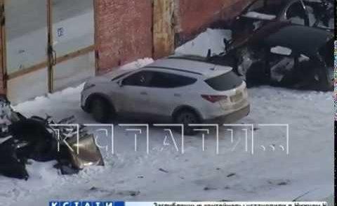 Пьяная компания для развлечения расстреляла беззащитную собаку