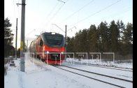 В Балахнинском районе под колёсами поезда погибли двое мужчин