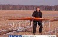 Диких животных в нижегородских лесах пересчитают с воздуха