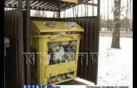 Потемкинские баки — так жители Бора называют мусорные баки, установленные в городе