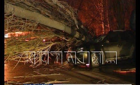 Ураганный ветер, раздавленные автомобили и новый температурный рекорд в Нижнем Новгороде