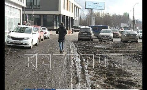Болотные топи вместо зелени — водители уничтожают газоны в городе