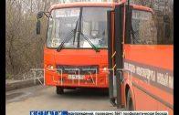 Автобусы, снятые с маршрутов за нарушение санитарных норм, снова вышли на линию