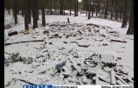 Несознательные граждане начали превращать леса в свалки