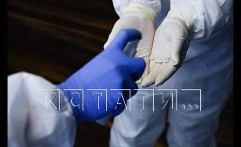 На онлайн-конференции Глеб Никитин затронул тему борьбы с коронавирусом