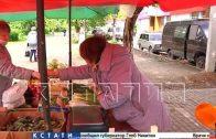 Нелегальные рынки антисанитарии расцвели на нижегородских улицах