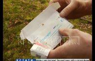 Тысячи доз противогриппозной вакцины выбросили неизвестные в нижегородском лесу