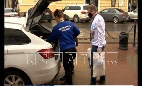 Волонтёрское движение в Нижегородской области набирает обороты