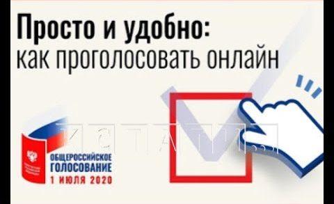 Тестовое электронное голосование проходит в Нижегородской области