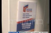Более миллиона нижегородцев уже проголосовали по поправкам к Конституции