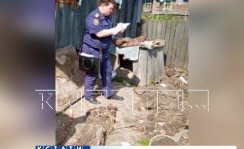 Жена топором зарубила мужа и похоронила его около собачьей будки