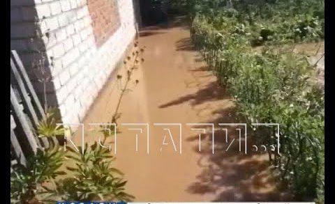 Рукотворный потоп поглотил дома и огороды в микрорайоне Дубенки