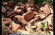 Свалка хлеба обнаружена в Советском районе