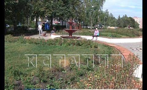 Бабушки-воровки стали одной из главных угроз городских парков
