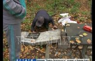 Массовый погром на нижегородском кладбище — разрушены десятки могил