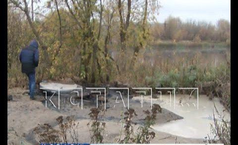 Фекальный приток появился у озера Зеркальное на Автозаводе